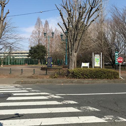 彩の森公園入口