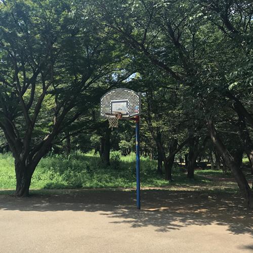彩の森入間公園 バスケットボール