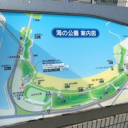 海の公園 到着